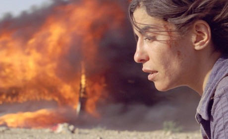 800_incendies