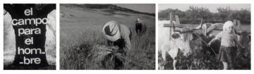"""Tres fotogramas de 'El campo para el hombre' (1973), en cuya producción el CCC ejemplifica su idea de """"un cine colectivo, que niega la división social del trabajo, considerando igualitariamente a todos los que intervienen en cada uno de sus productos""""."""