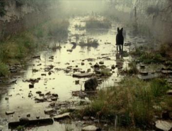 Stalker (Andrei Tarkovski, 1979)