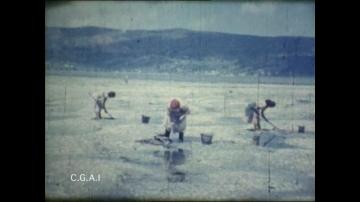 'Un viaje por Galicia' (Manuel Arís, 1958)...