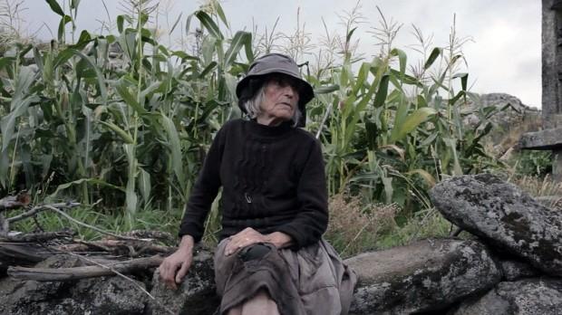 António, Lindo António (Ana Maria Gomes, 2015)