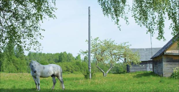 Hello, Horse! (2017)
